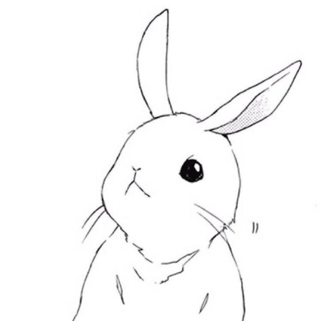 我想画一只可爱的兔兔