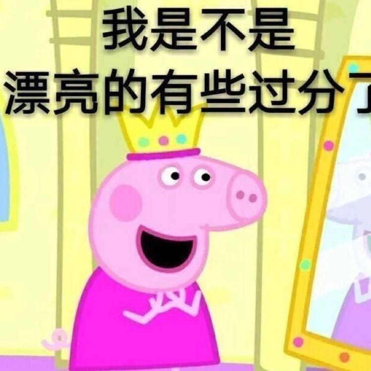 一群猪的照片图片可爱