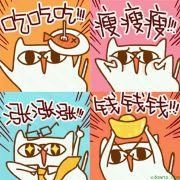 唛唛的布偶猫
