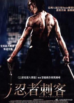 忍者刺客2010
