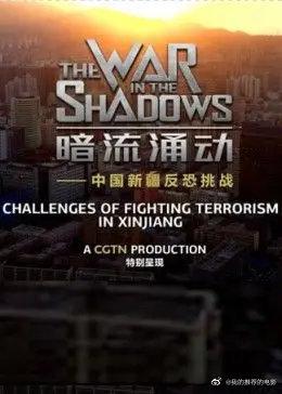 暗流涌动――中国新疆反恐挑战