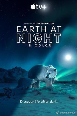 夜色中的地球第二季