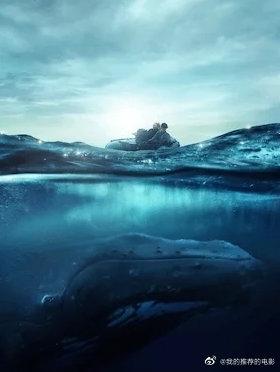 探寻鲸之音