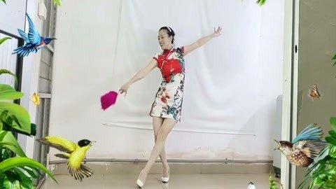 中老年模特旗袍舞蹈