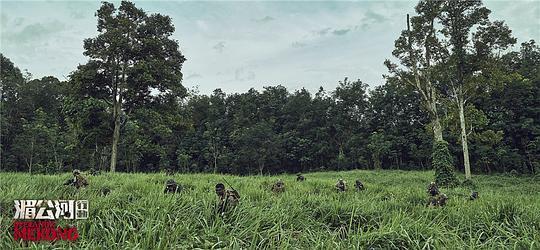 湄公河行动图片