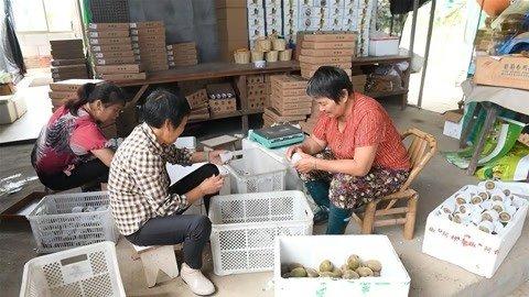 安徽新闻联播20190903