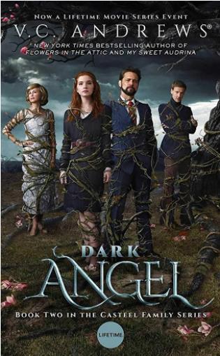 暗黑天使 Dark Angel