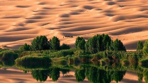 断河复流荒漠变绿洲 中国竟成全球重大剧变受益者?