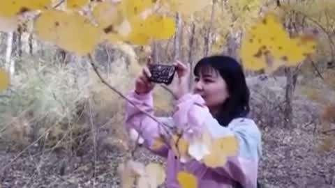 外卖无人配送技术亮相 胡杨林迎来最美观赏季