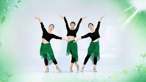 广场舞课堂《丁丁》