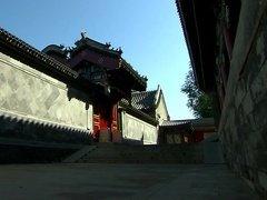坐在家里逛胡同,寻找京城小清新