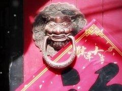 坐在家里逛胡同,京城寻柳云踏青