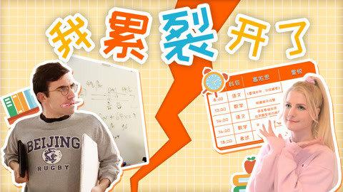 外国人连续14小时挑战中国小学生网课,我的智商哪里去了?