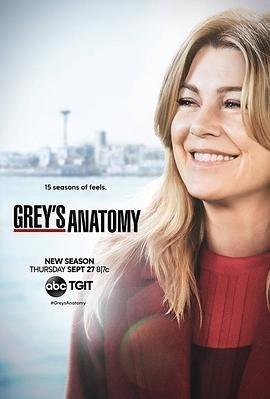 实习医生格蕾第十五季