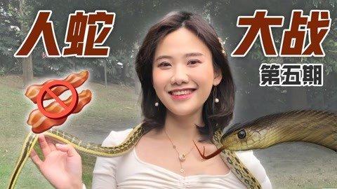 密子君·野外捉蛇吓到腿软,全蛇宴缺吃到连皮都没剩下!真香