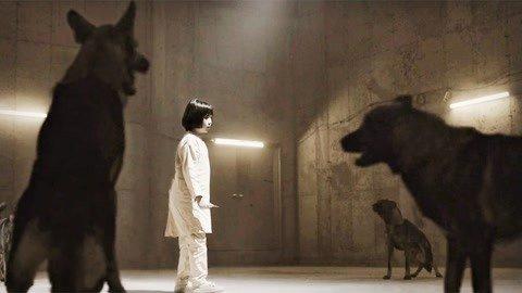 8岁小女孩用超能力打狗
