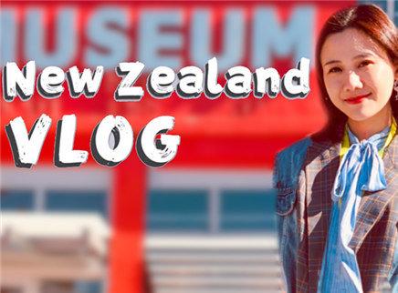 400元在新西兰杂物店能买到什么