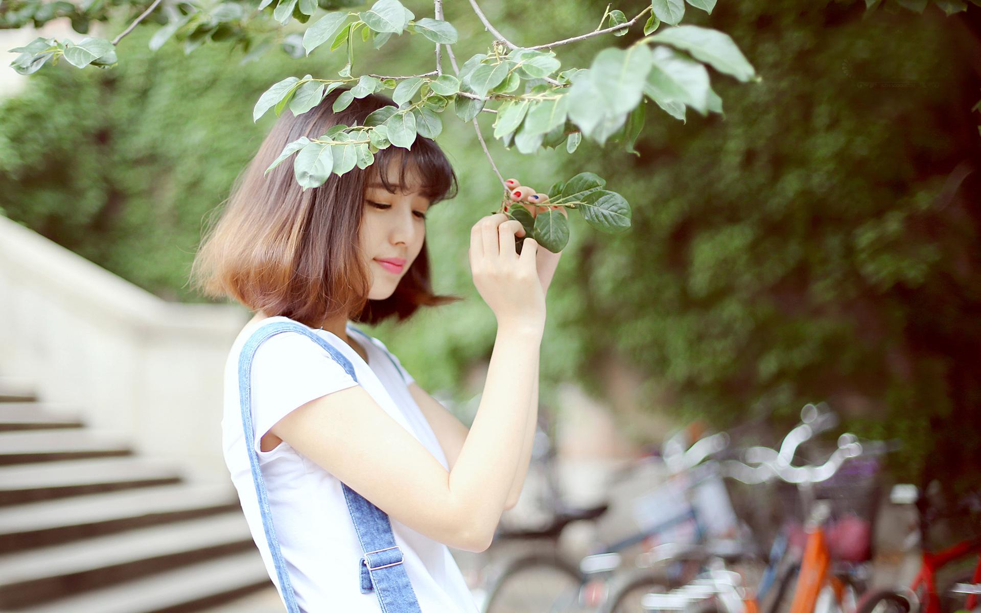 小清新个人博客主页