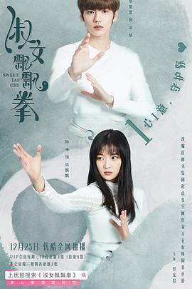 淑女飘飘拳(国产剧)