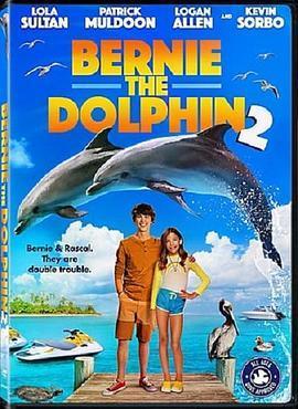海豚伯尼2