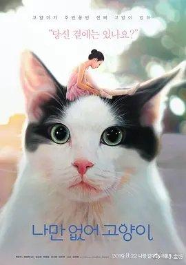 只有我没有猫(剧情片)