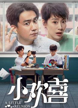 小欢喜(国产剧)