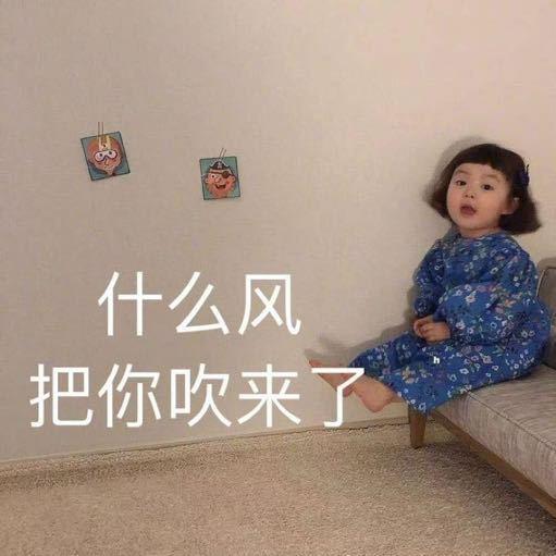 Ling_大宝