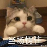 陈情令演唱会 http://t.cn/AiBP1liG 