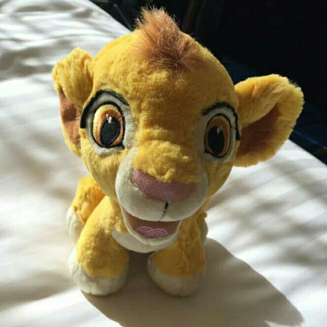 做一只温柔的小狮子
