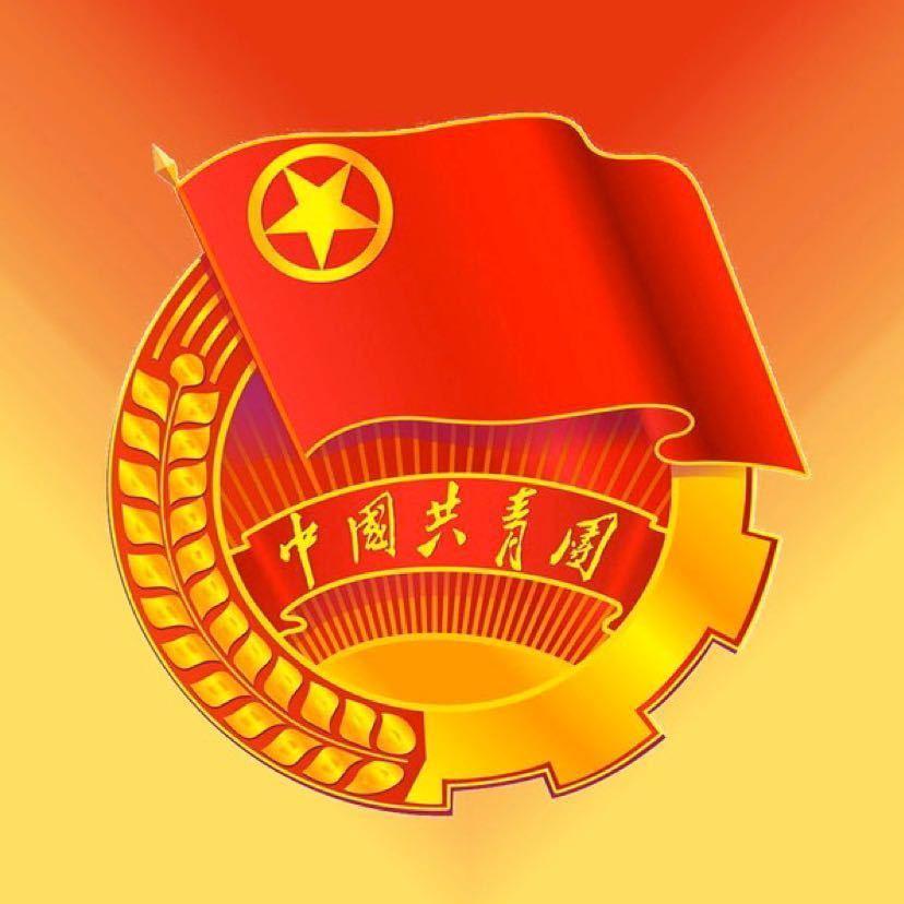 石家庄市裕华区团委