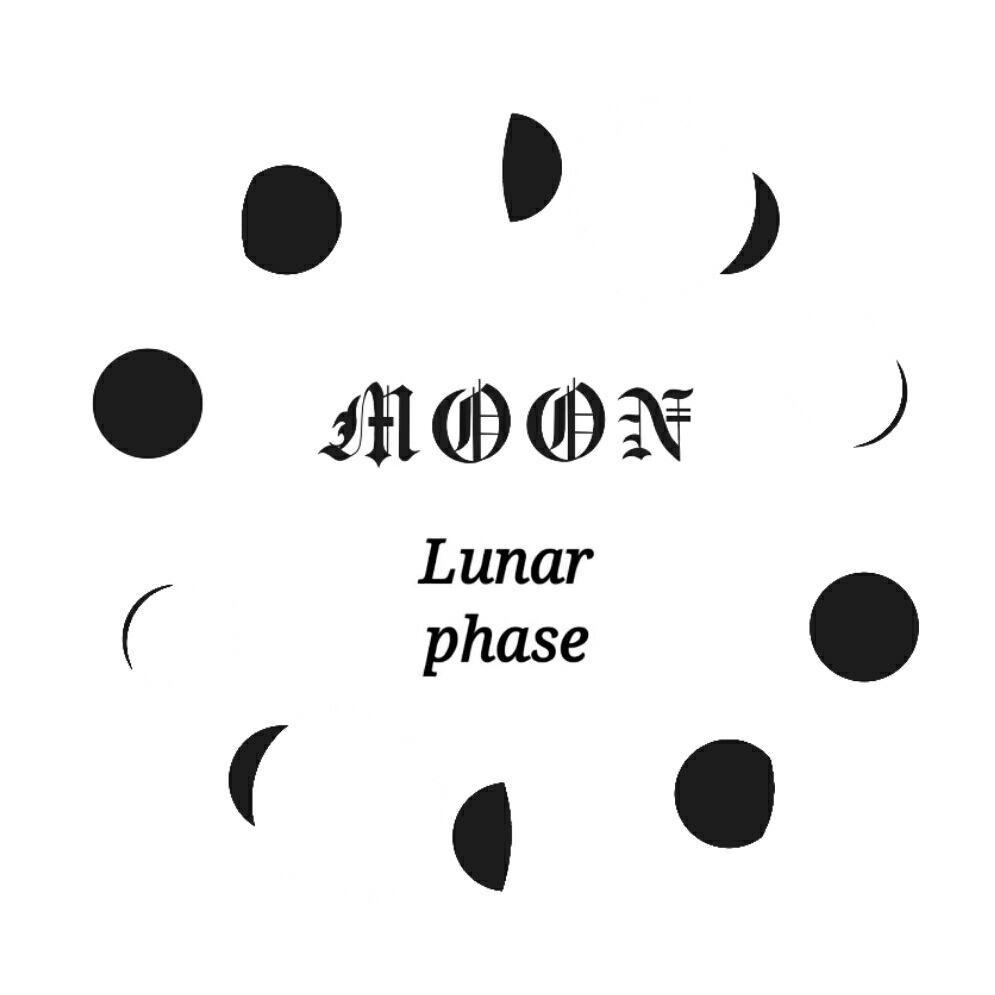 Lunar_phase月相