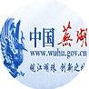 芜湖市人民政府发布