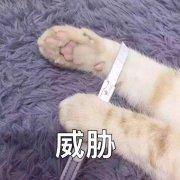 林更新微博照片