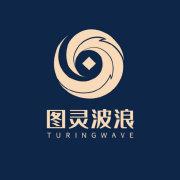 图灵波浪理论