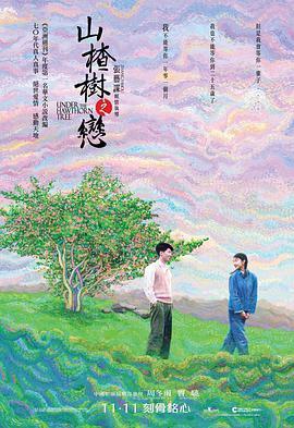 山楂树之恋