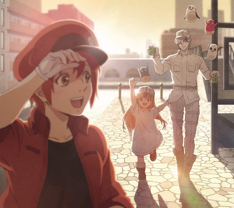 工作细胞第2季ED片尾曲「Fight!!」下载 ClariS 动漫音乐