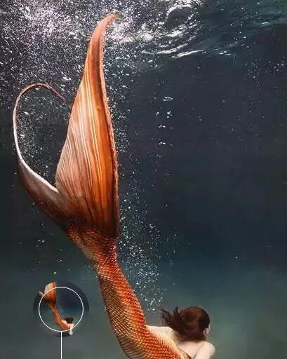 涨姿势《海的女儿》的图片 第1张