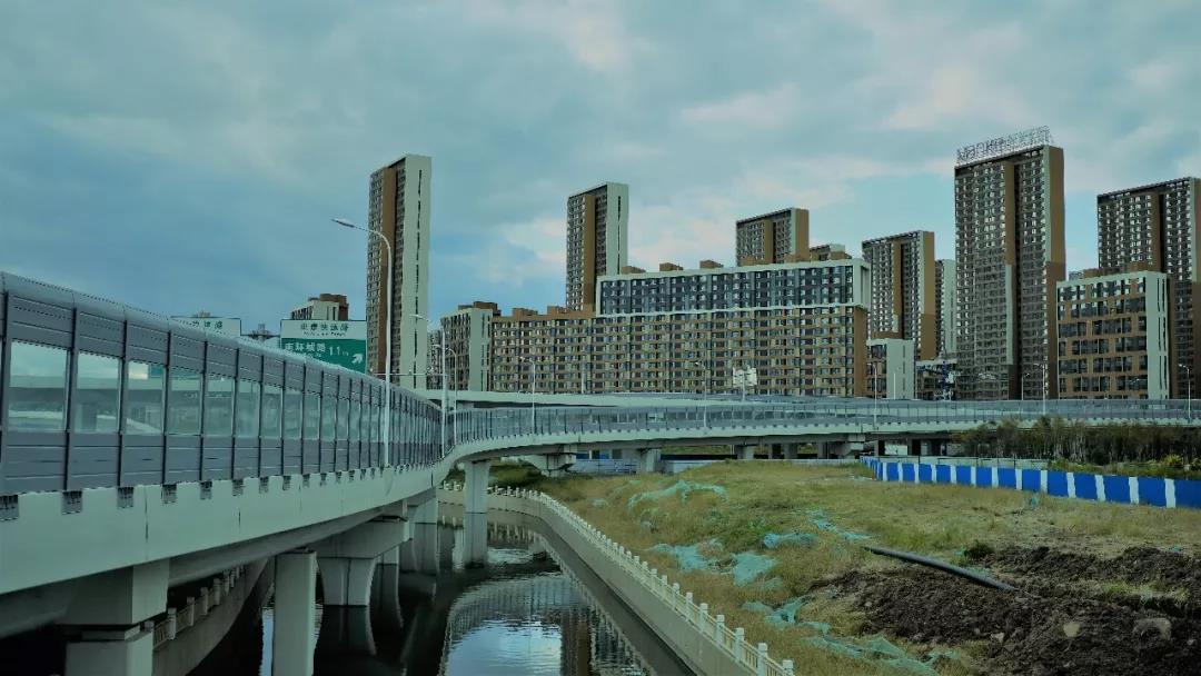 生活冷知识《北京人在纽约》的图片