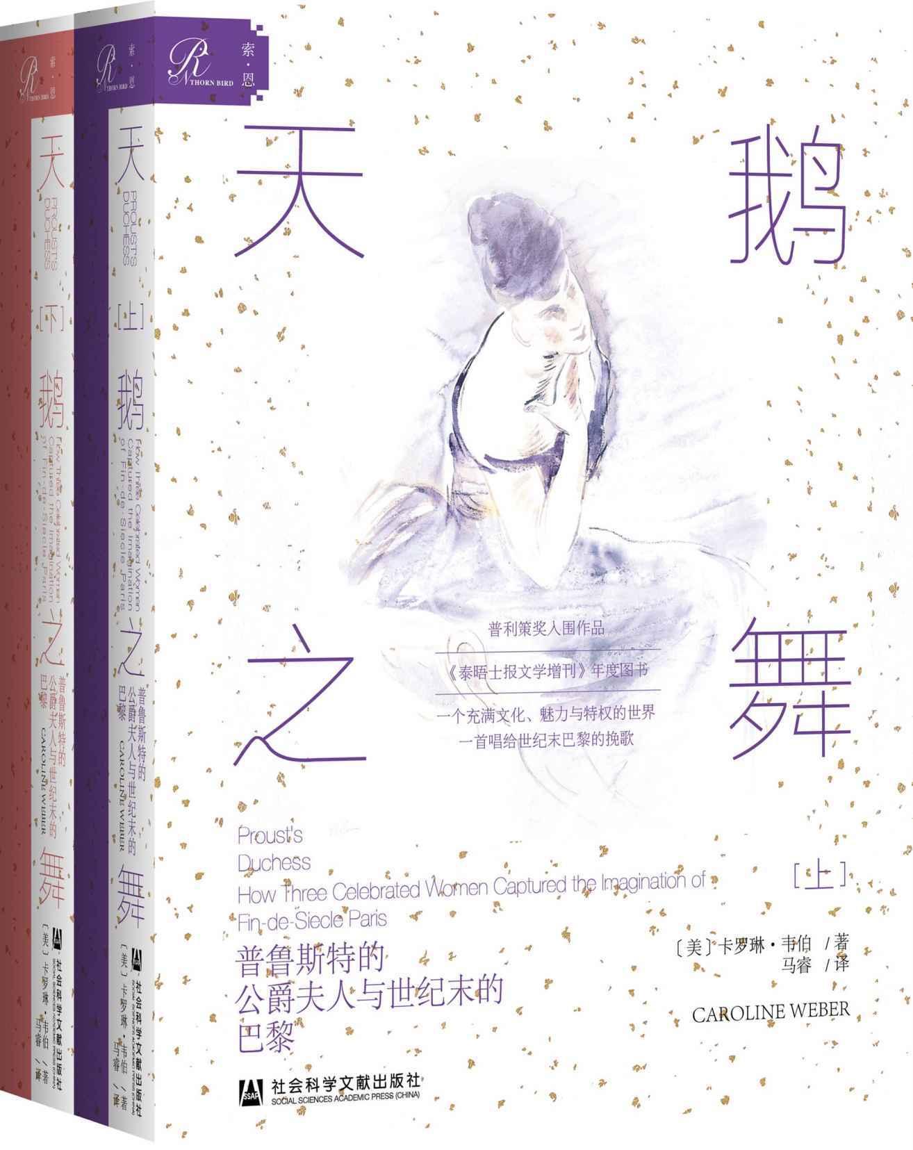 天鹅之舞:普鲁斯特的公爵夫人与世纪末的巴黎(全2册)pdf-epub-mobi-txt-azw3