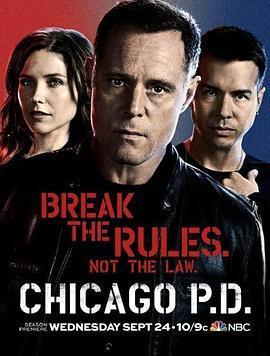 芝加哥警署第二季