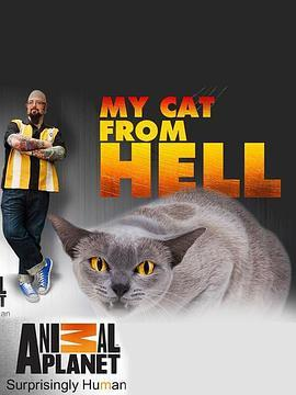 家有恶猫第二季