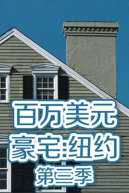 百万美元豪宅:纽约第三季