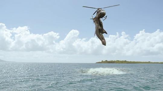 夺命五头鲨图片