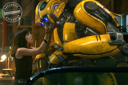 大黄蜂图片