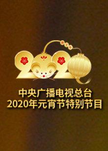 2020央视元宵节特别节目