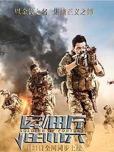 雇佣兵(2016)