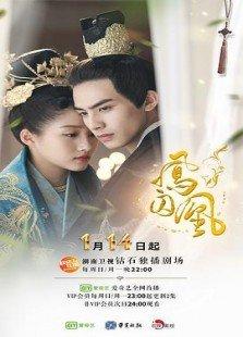 凤囚凰(DVD版)