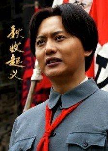 秋收起义(DVD版)