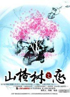 山楂树之恋(TV版)