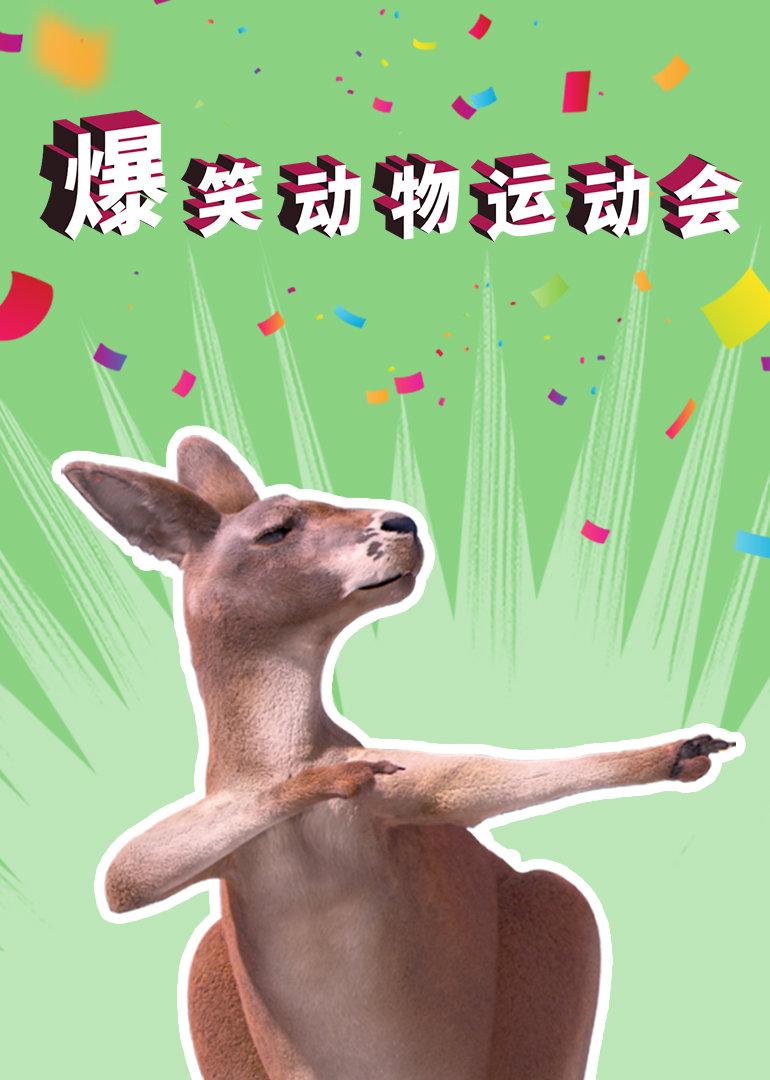 爆笑动物运动会
